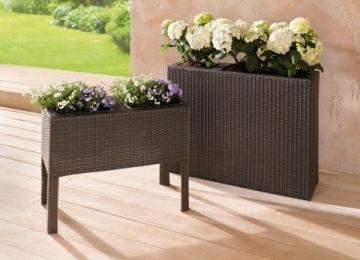 pflanzwand polyrattan grau braun 80cm hoch. Black Bedroom Furniture Sets. Home Design Ideas